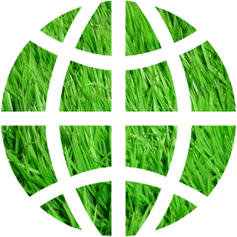 Groundology logo